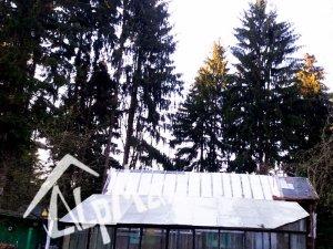 Удаление 7 деревьев в деревне Ратомка