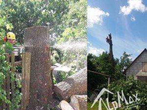 Удаление дерева в Минской области, д. Ждановичи